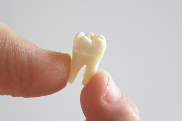 Mão segurando dente
